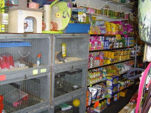 Pet-stores